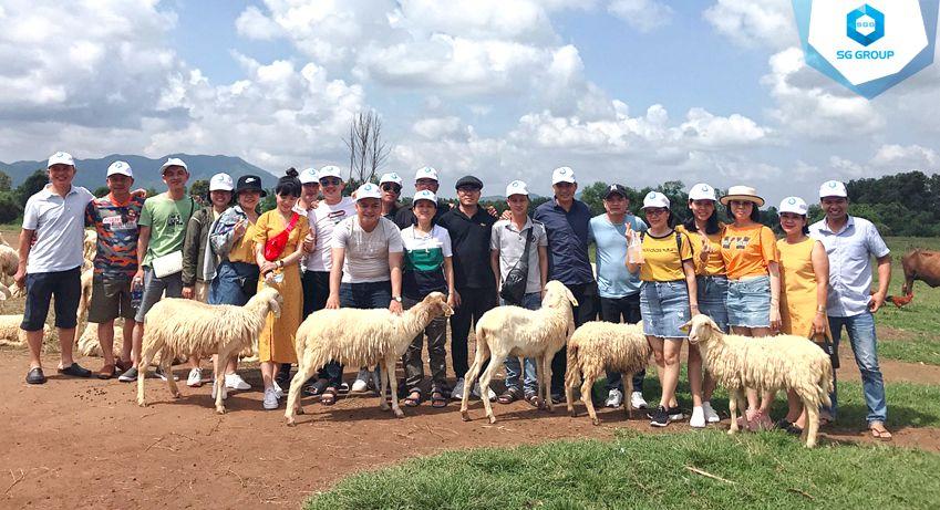 Công ty Quốc tế Sông Hồng tại nông trại cừu