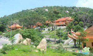 Tour Long Hải