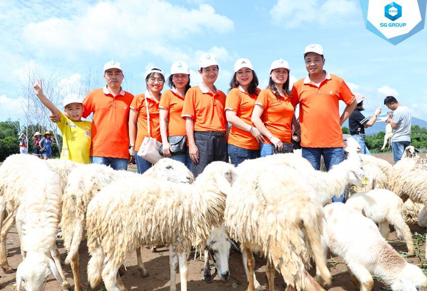 Các thành viên của Liên đoàn Lao động quận Gò Vấp tại nông trại cừu Vũng Tàu