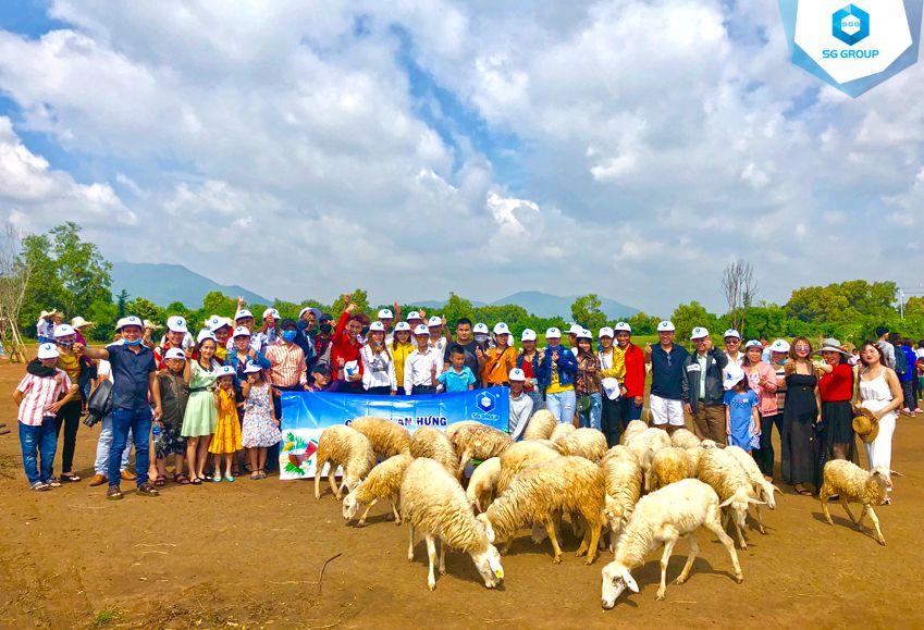Công ty An Hưng tại nông trại cừu