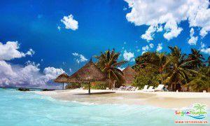 Vẻ đẹp hoang dã của vịnh Nha Trang