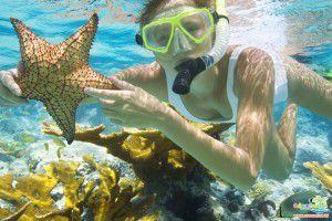 Tour du lịch Côn Đảo giá rẻ