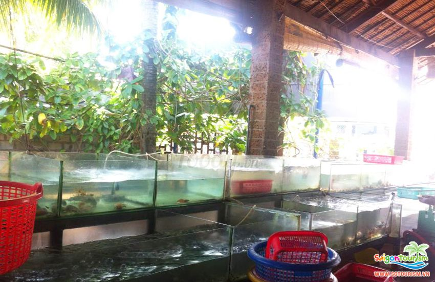 quán ăn ngon tại phú quốc