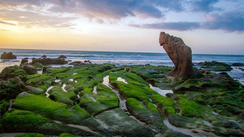 Bãi biển Cổ Thạch (Bình Thuận) 'hút' khách bởi vẻ đẹp như trong truyện cổ tích